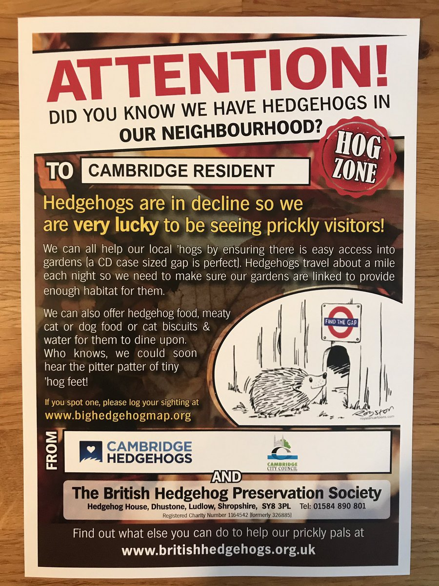 hedgehog leaflet